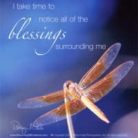 Dragonfly Affirmation Card