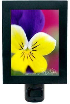 flower-night-light11
