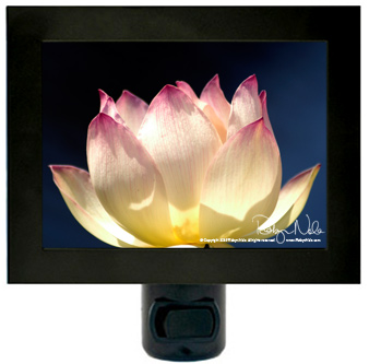 lotus-flower-nightlight5