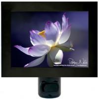 lotus-flower-nightlight7