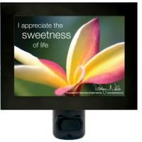 """I appreciate the sweetness of life"" positive affirmation night light"