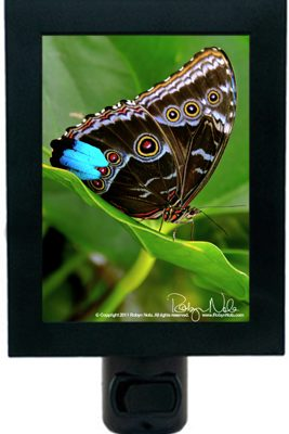 Nature-is-my-healer-butterfly-gifts