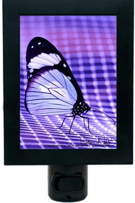 butterfly-inspirational-gifts2