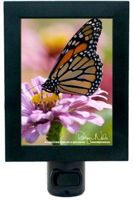 butterfly-nightlight4