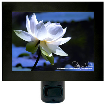 lotus-flower-nightlight4