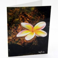 plumeria-hawaii-greeting-card-sm