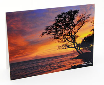robyn-nola-hawaiian-sunset-greeting-card