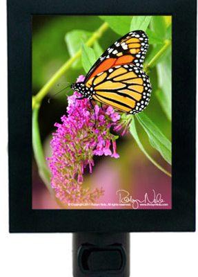 butterfly-nightlight-inspirational-gifts