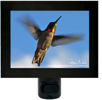 Beauty Lives in my Heart-Hummingbird Night light