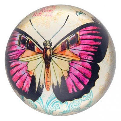 Beautiful-Butterfly-Gifts-Butterfly-Paperweight