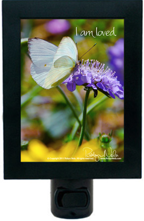 Inspirational Butterfly Gifts