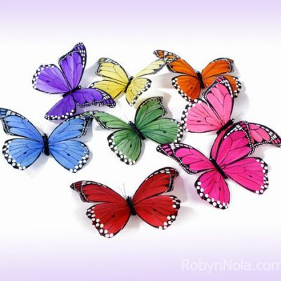 Colorful-Butterfly-Gifts