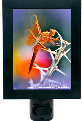 Dragonfly Art Night Light
