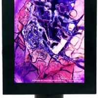 Gem and Mineral Fine Art night light