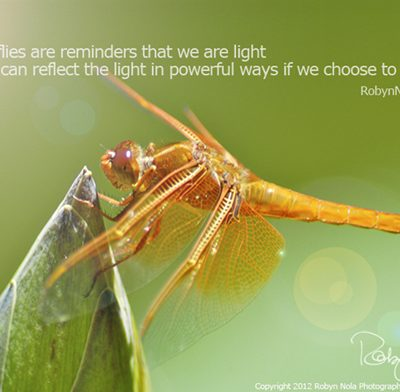 dragonfly-art-inspirational-art-robyn-nola