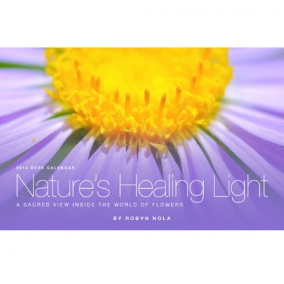 Natures Healing Light Flower and Inspirational Quote Calendar for 2013