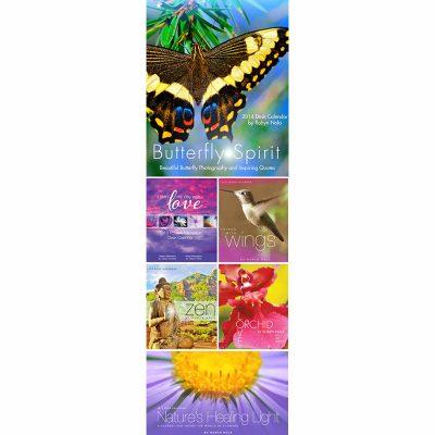 Robyn Nola 2014 Calendars