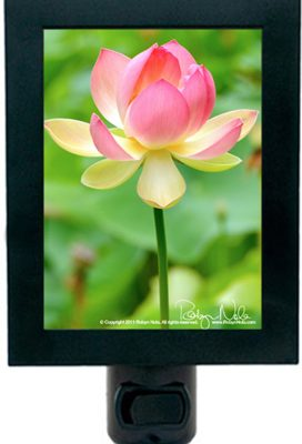 Sacred Lotus Flower Night Light
