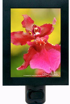 Orchid Love Night Light