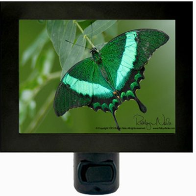 Emerald Green Butterfly Night Light