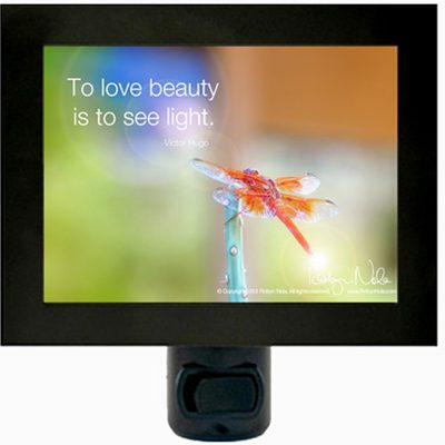 Inspirational Quote Dragonfly Night Light