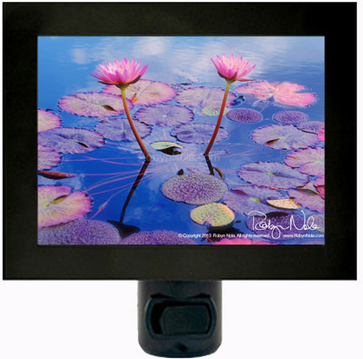 Water Lily Flower Night Light by Robyn Nola