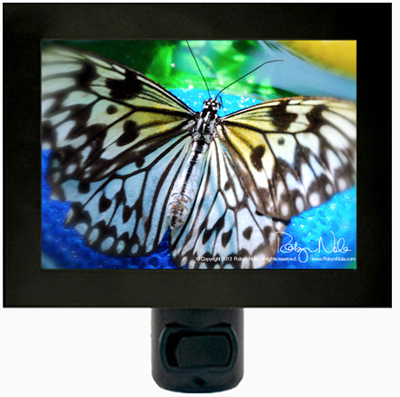Beautiful Butterfly Night Light
