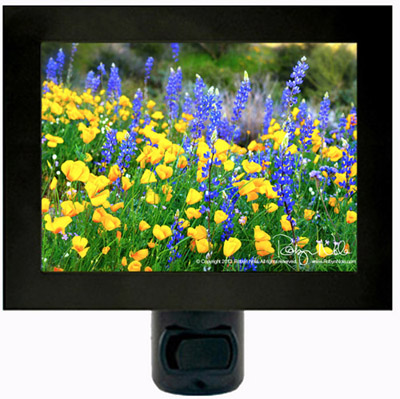 Spring Wildflowers Night Light