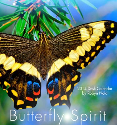 Butterfly Calendar by Robyn Nola