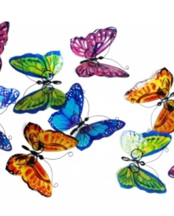 Beautiful Butterfly Gifts